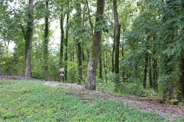 43 Nadia Ln, Smithville, TN 37166 (MLS #1859797) :: CityLiving Group