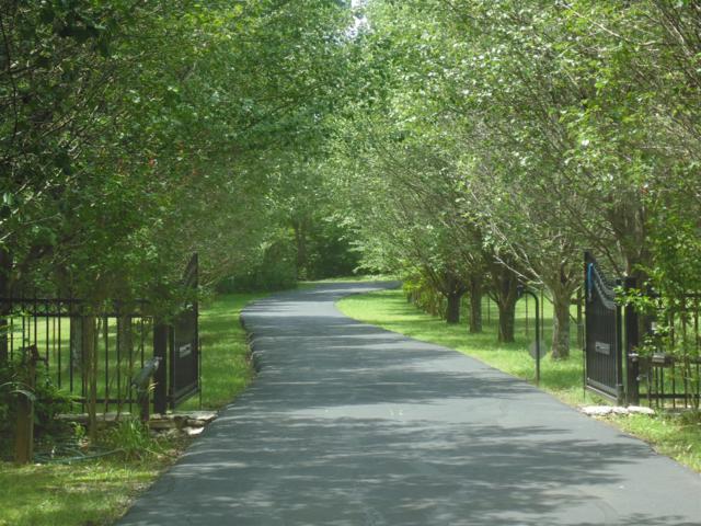 353 Thompson Rd, Unionville, TN 37180 (MLS #1863317) :: EXIT Realty Bob Lamb & Associates
