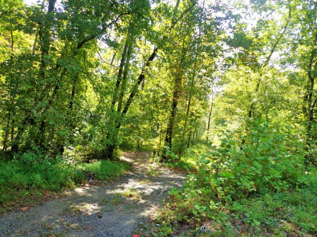 0 Hidden Hills Dr, Waverly, TN 37185 (MLS #1863643) :: REMAX Elite