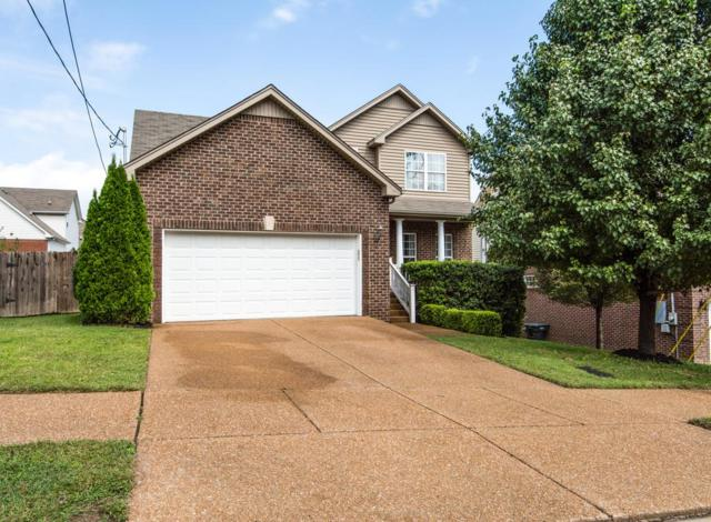 8240 Tapoco Ln, Brentwood, TN 37027 (MLS #1865005) :: The Miles Team | Synergy Realty Network