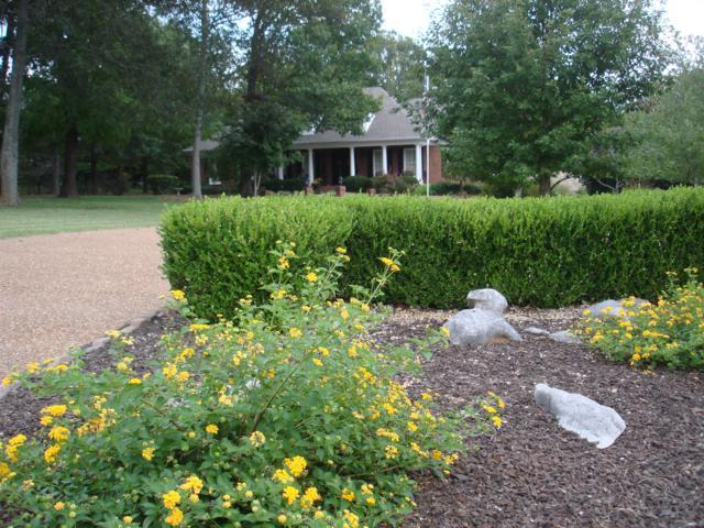 9430 Weatherly Dr, Brentwood, TN 37027 (MLS #1865138) :: NashvilleOnTheMove | Benchmark Realty