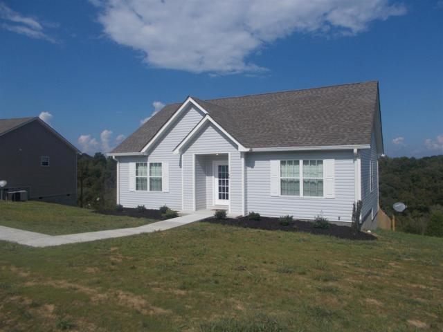 169 Lizzie Rd, Ashland City, TN 37015 (MLS #1865667) :: John Jones Real Estate LLC