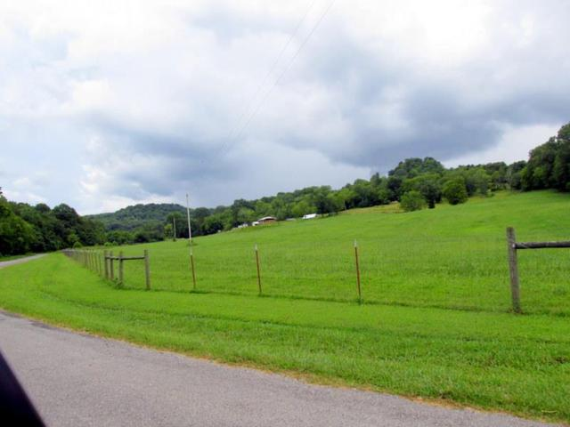 392 Fuss Hollow Rd, Petersburg, TN 37144 (MLS #1866082) :: The Kelton Group