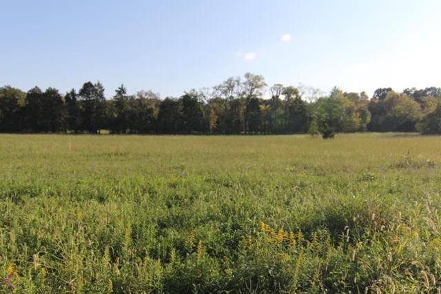 4210 Alsup Mill Rd, Lascassas, TN 37085 (MLS #1867024) :: John Jones Real Estate LLC