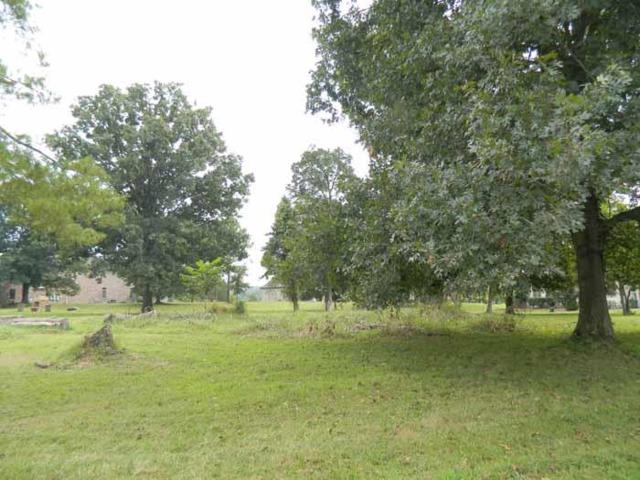 15 Devan Kishan Way (Lot 15), Mount Juliet, TN 37122 (MLS #1867748) :: CityLiving Group