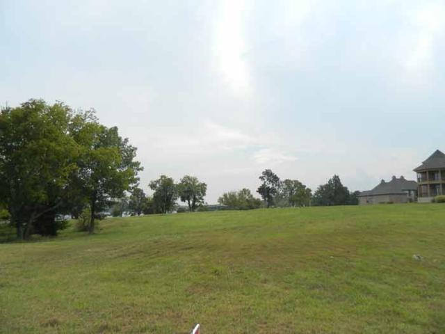 20 Camille Victoria Ct(Lot20, Mount Juliet, TN 37122 (MLS #1867751) :: CityLiving Group