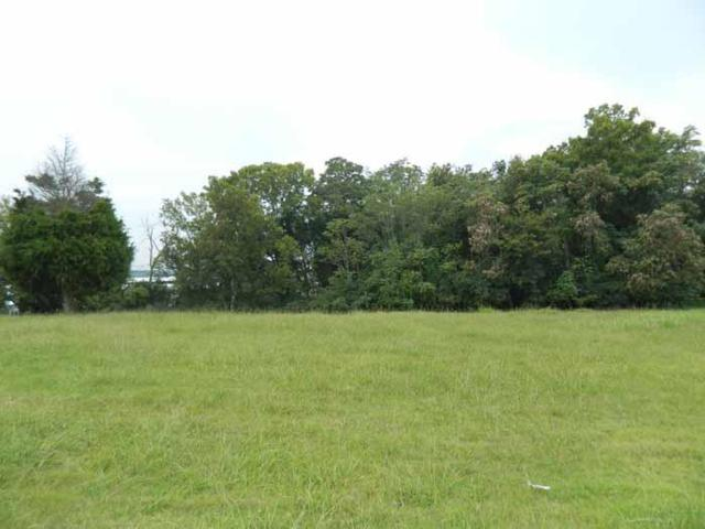 22 Camille Victoria Ct(Lot22, Mount Juliet, TN 37122 (MLS #1867754) :: CityLiving Group