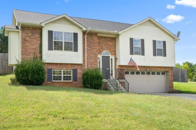 970 Brandi Phillips Dr, Clarksville, TN 37042 (MLS #1869095) :: EXIT Realty Bob Lamb & Associates