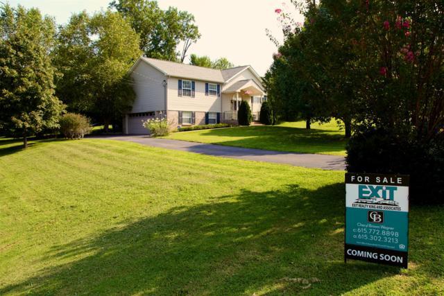 513 J T Ct, Spring Hill, TN 37174 (MLS #1872369) :: Felts Partners