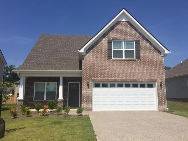 1034 Solomon Lane Lot 320, Spring Hill, TN 37174 (MLS #1874334) :: DeSelms Real Estate