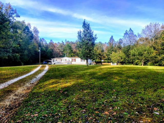 2240 Arnold Hollow Rd, Waverly, TN 37185 (MLS #1874707) :: John Jones Real Estate LLC