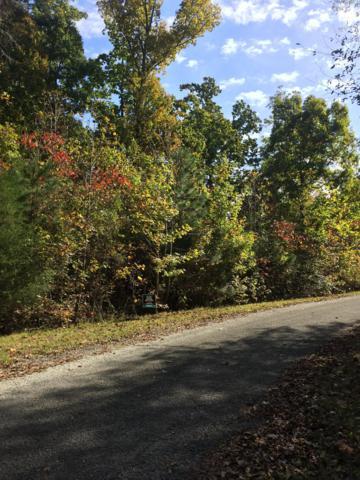 0 Links Bend Way, Springville, TN 38256 (MLS #1875990) :: John Jones Real Estate LLC