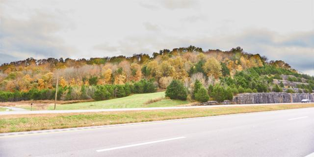0 John Bragg Hwy, Woodbury, TN 37190 (MLS #1878198) :: Maples Realty and Auction Co.