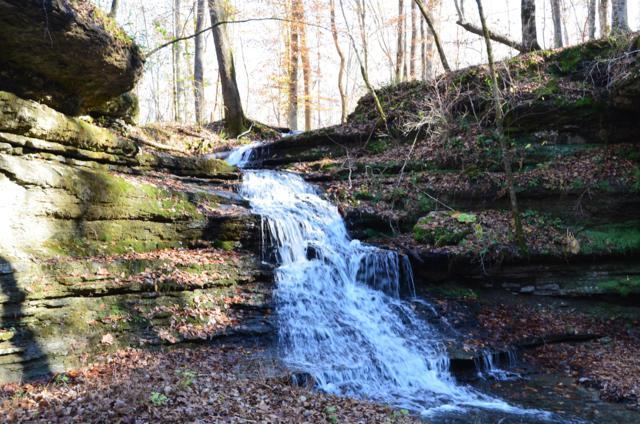 658 Catheys Creek Rd, Waynesboro, TN 38485 (MLS #1882627) :: Maples Realty and Auction Co.