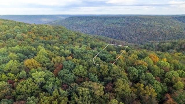 0 Azalea Ln Lot 6, McMinnville, TN 37110 (MLS #1883120) :: RE/MAX Homes And Estates