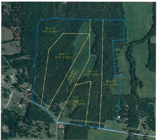 0 Tract 1 Vaught Rd, Readyville, TN 37149 (MLS #1886036) :: EXIT Realty Bob Lamb & Associates