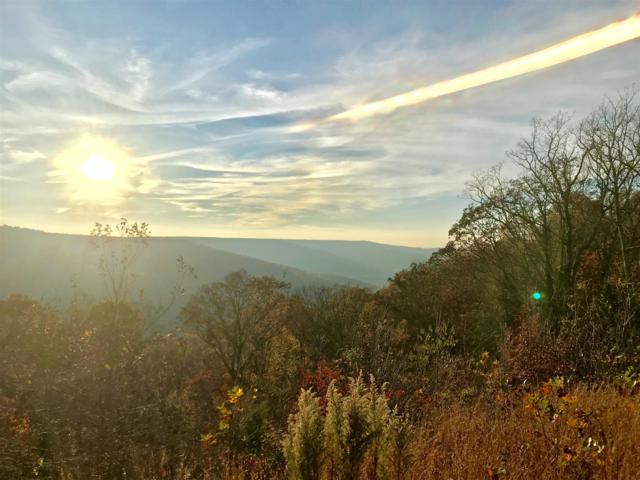 1179 N Campbell Rd, Altamont, TN 37301 (MLS #1887314) :: CityLiving Group