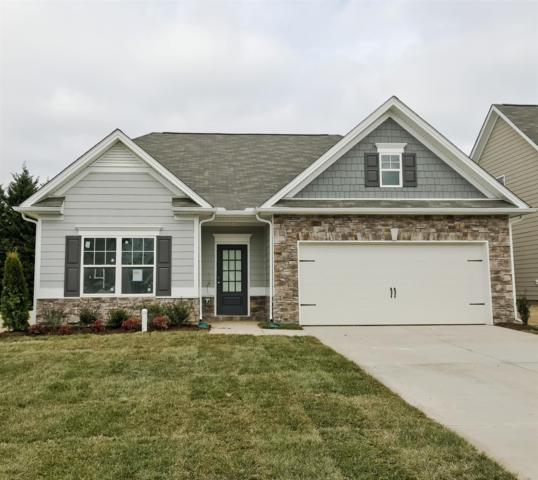 913 Carnation Drive, Spring Hill, TN 37174 (MLS #1888068) :: Berkshire Hathaway HomeServices Woodmont Realty