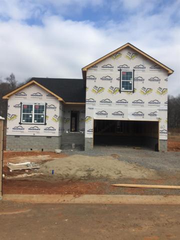 60 Eagles Bluff, Clarksville, TN 37040 (MLS #1888156) :: CityLiving Group