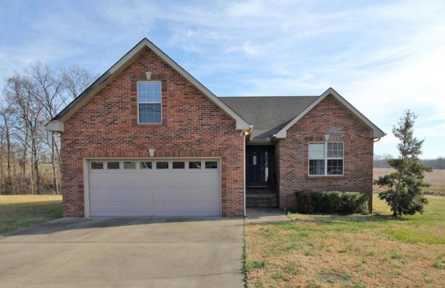219 Arabian Lane, Springfield, TN 37172 (MLS #1888385) :: The Milam Group at Fridrich & Clark Realty