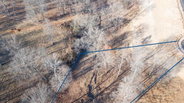 22 Whitewood Farm, Clarksville, TN 37043 (MLS #1890044) :: DeSelms Real Estate