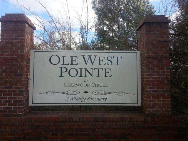 39 W Ole Pointe Road, Smithville, TN 37166 (MLS #1893117) :: FYKES Realty Group
