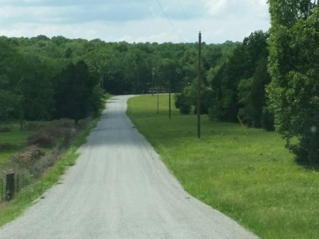 0 Jess Neal Rd, Spring Hill, TN 37174 (MLS #1894055) :: DeSelms Real Estate
