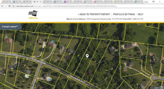 1109 Forestpointe, Hendersonville, TN 37075 (MLS #1894227) :: DeSelms Real Estate