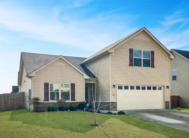 803 Avatar Ct, Smyrna, TN 37167 (MLS #1894898) :: EXIT Realty Bob Lamb & Associates