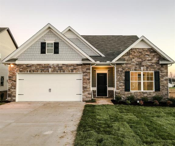 925 Carnation Drive, Spring Hill, TN 37174 (MLS #1894939) :: Exit Realty Music City