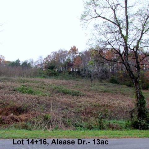 0 Alease, Fayetteville, TN 37334 (MLS #1897479) :: Nashville on the Move