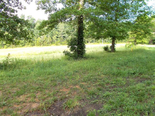 0 Lick Creek Rd, Lyles, TN 37098 (MLS #1897588) :: CityLiving Group