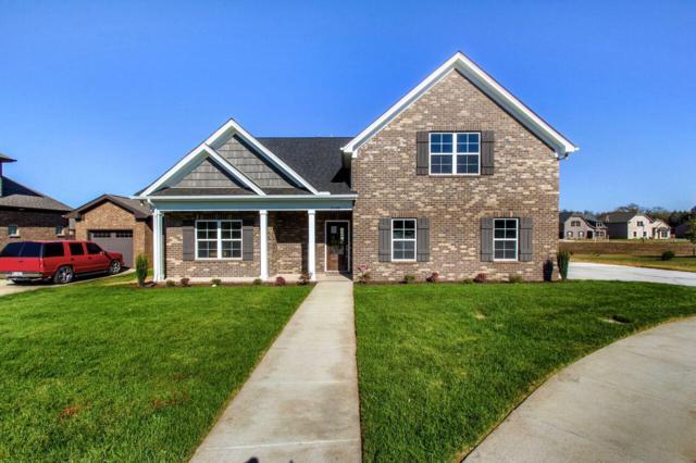 5545 Stonefield Drive, Smyrna, TN 37167 (MLS #1899107) :: CityLiving Group