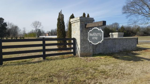 3020 Berry Patch Trl, Rockvale, TN 37153 (MLS #1900352) :: CityLiving Group
