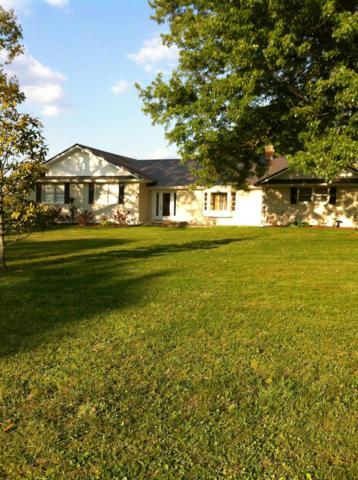 1324 Gap Rd, Altamont, TN 37301 (MLS #1900654) :: EXIT Realty Bob Lamb & Associates