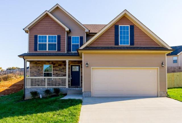 92 Rossview Place, Clarksville, TN 37043 (MLS #1900701) :: DeSelms Real Estate