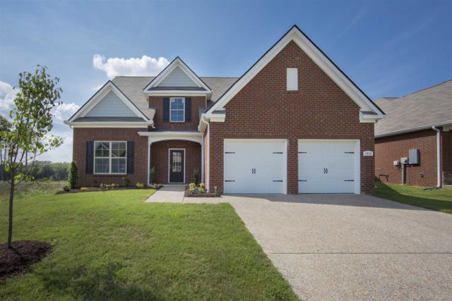 0 Winslet Drive - Lot 714, Smyrna, TN 37167 (MLS #1901425) :: NashvilleOnTheMove   Benchmark Realty