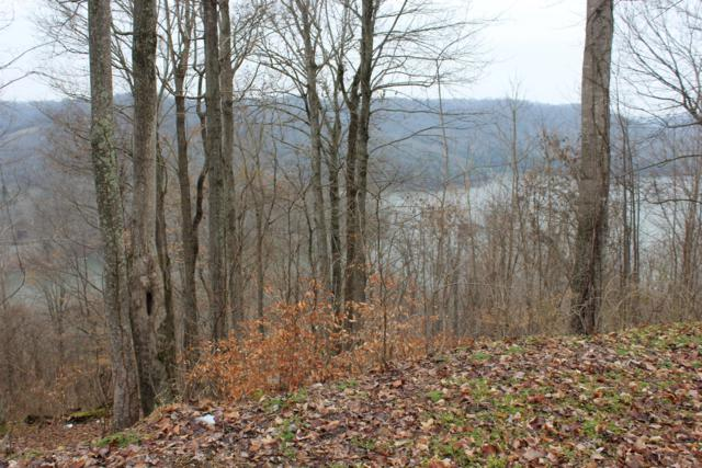 0 Skylar Dr (Lot 55), Smithville, TN 37166 (MLS #1901799) :: CityLiving Group