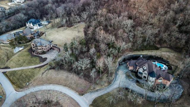 391 Lady Of The Lake Lane, Franklin, TN 37067 (MLS #1901897) :: HALO Realty
