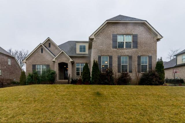1041 Alice Springs Cir, Spring Hill, TN 37174 (MLS #1902816) :: The Milam Group at Fridrich & Clark Realty
