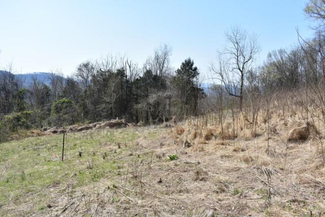 0 Sullivan Bend Rd, Elmwood, TN 38560 (MLS #RTC1903317) :: Village Real Estate