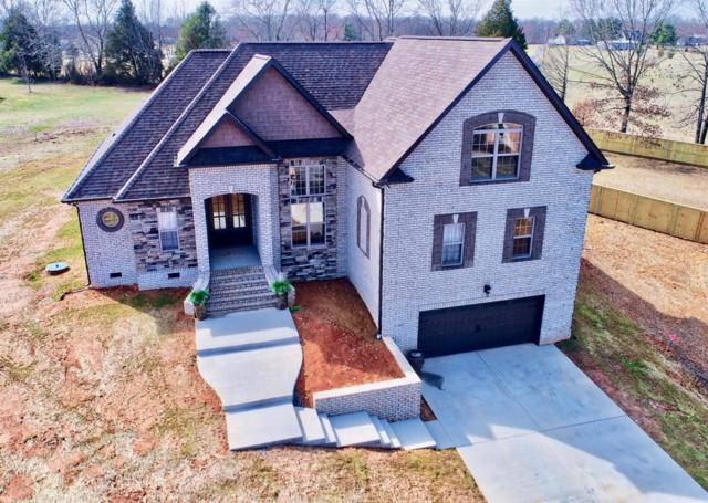 107 Crystal Ct, White House, TN 37188 (MLS #1903351) :: RE/MAX Choice Properties