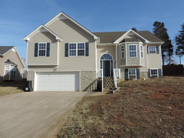 1388 Mutual Drive, Clarksville, TN 37042 (MLS #1903710) :: DeSelms Real Estate