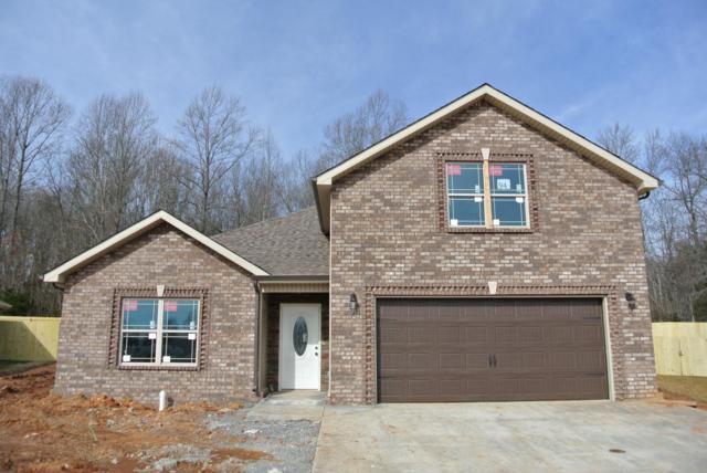119 Rossview Place, Clarksville, TN 37043 (MLS #1904753) :: Hannah Price Team