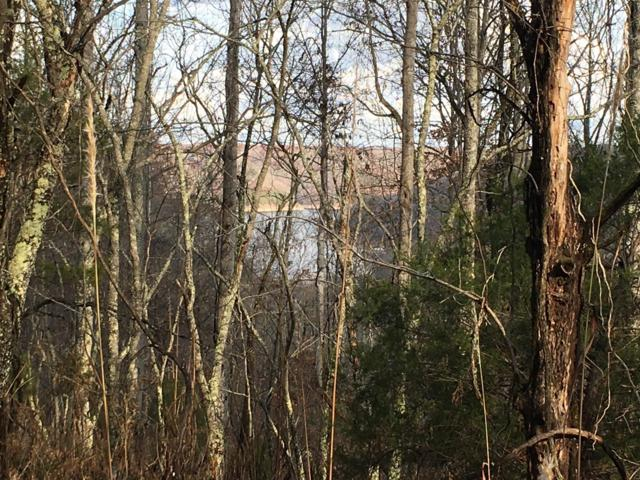 76 Stacey Rd, Smithville, TN 37166 (MLS #1906810) :: CityLiving Group