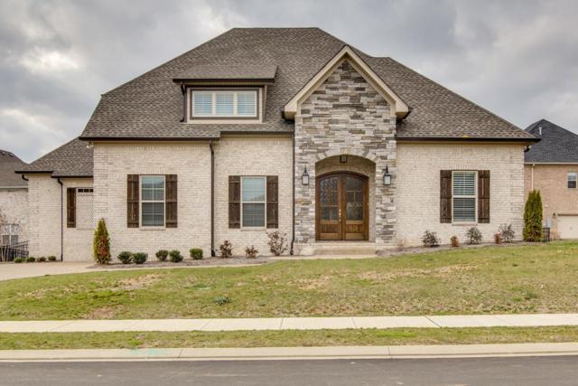 205 Scarsdale Dr N, Hendersonville, TN 37075 (MLS #1909560) :: NashvilleOnTheMove | Benchmark Realty