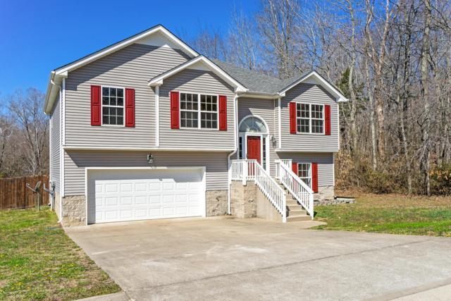 1313 Mutual Dr, Clarksville, TN 37042 (MLS #1910862) :: NashvilleOnTheMove | Benchmark Realty