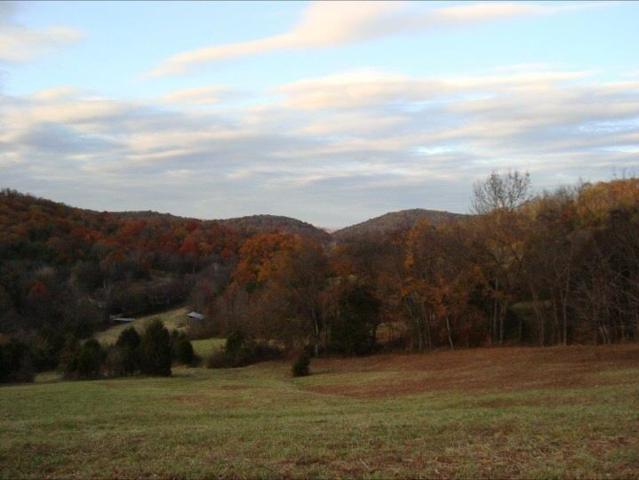 0 Tolbert Hollow Rd, Bradyville, TN 37026 (MLS #1910999) :: Ashley Claire Real Estate - Benchmark Realty