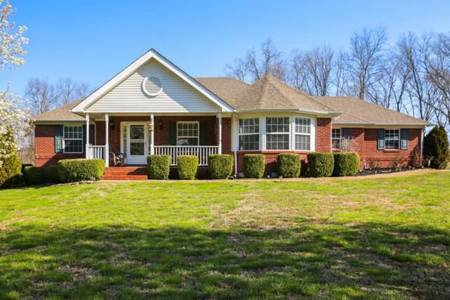 517 Katelyn Dr S, Spring Hill, TN 37174 (MLS #1911321) :: Berkshire Hathaway HomeServices Woodmont Realty