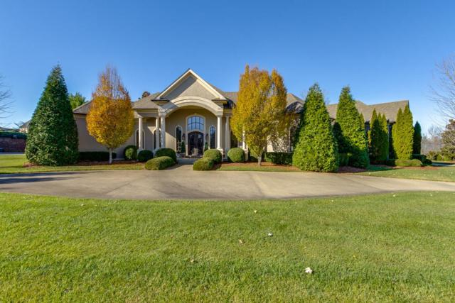 120 Danford Dr, Clarksville, TN 37043 (MLS #1912391) :: Ashley Claire Real Estate - Benchmark Realty